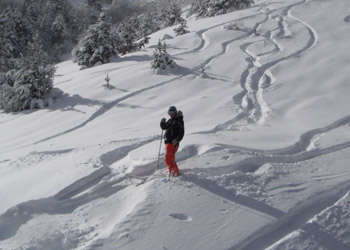 Skier in deep powder with tracks in the snow