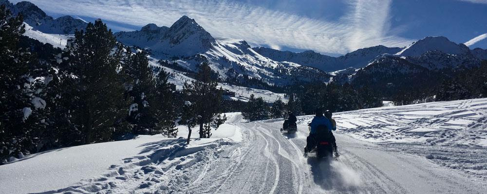 Team on snowmobiles