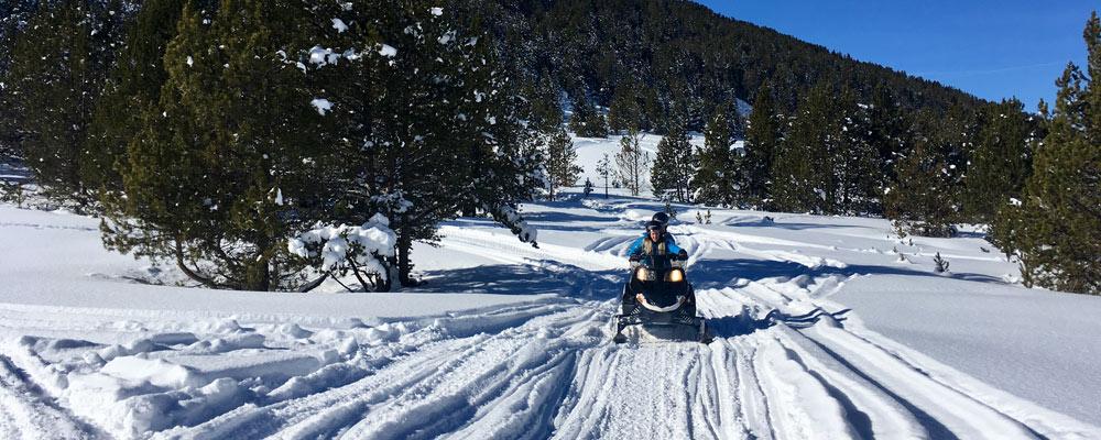 Team on snowmobile