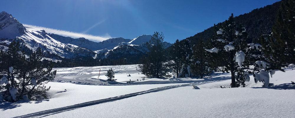 Powder snow and blue sky
