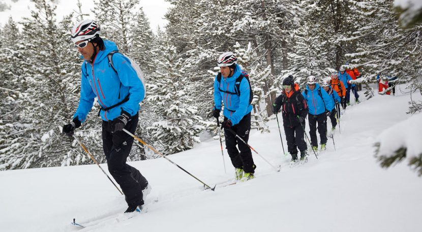 Cross-country skiing through forrest